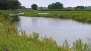 Deutsche Flüsse in schlechtem Zustand