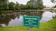 In diesem Dorfteich in Neukirchen ertranken im Sommer 2016 drei Kinder.