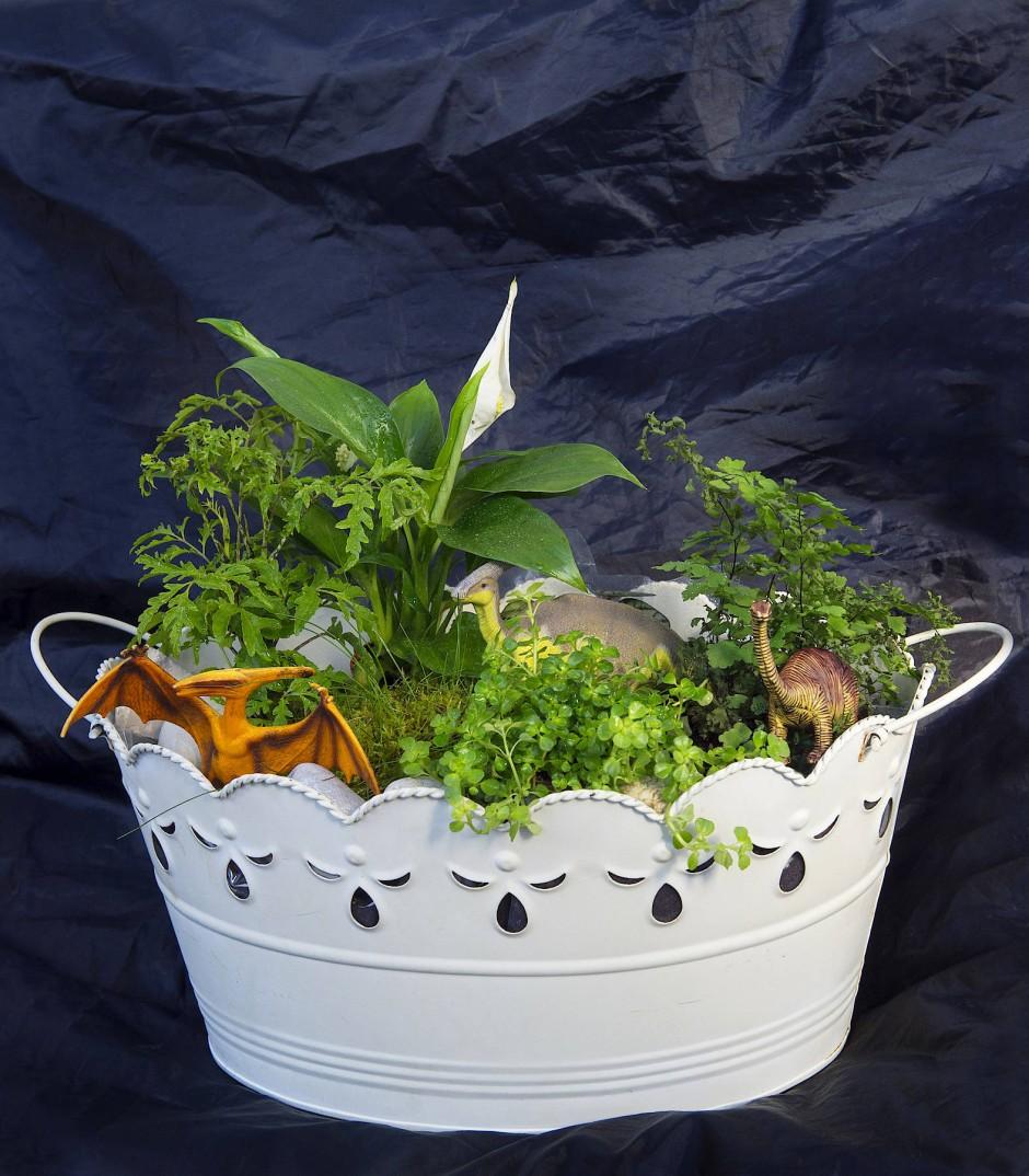 Gefällt auch Jungs: der Sauriergarten mit Farn und Wasserlilien.