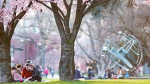 Investition in saubere Parks und abfallfreie Plätze