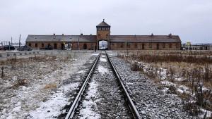 Polnischer Senat stimmt für umstrittenes Holocaust-Gesetz