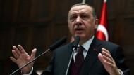Im Visier der Menschrechtler: der türkische Präsident Erdogan