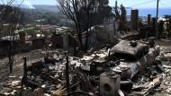 Buschbrände hinterlassen Chaos