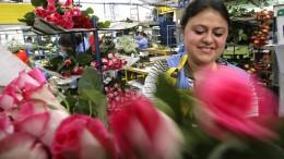 Valentinstag sorgt für Arbeit in Kolumbien
