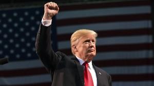Endlich wieder Steine auf Trump werfen