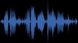Klingelt es bei Ihnen: Wozu dient diese Melodie?