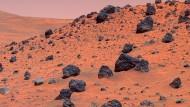 Weder Luft noch Strände - weltraumtouristisch ist der Mars ein eher zweifelhaftes Ziel. Hier eine Aufnahme des Exploration Rover Spirit von 2006.