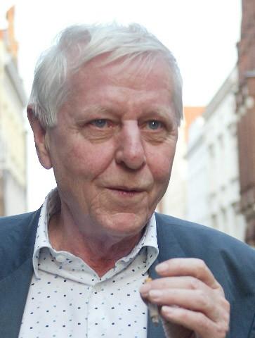Hans Magnus Enzensberger