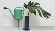 """Halten sich die Waage: Auf dem Pflanzenständer """"Longarm"""" von Katrin Greiling finden Vase und Gießkanne ihr gutes Gleichgewicht."""