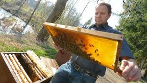 Der Bienenretter aus Tübingen