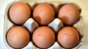Aldi verkauft wieder Eier