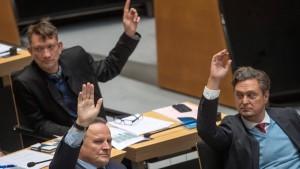 """Außenministerium wirft AfD """"Fake News"""" vor"""