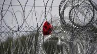 Kein Interesse an einer Verteilung nach Quote: Und auch an den eigenen Außengrenzen schottet sich Ungarn gegen Flüchtlinge ab.