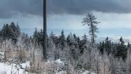 Skifahren in Tschechien: Die abenteuerliche Alternative