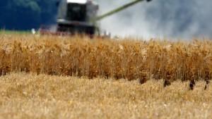 Pläne für Grundsteuer beunruhigen Landwirte