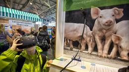 Frankfurts größter Bauernhof mit Bio-Ecke