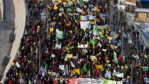 Tausende demonstrieren gegen Massentierhaltung