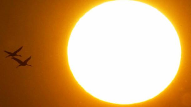Sonne für ein gesundes Herz