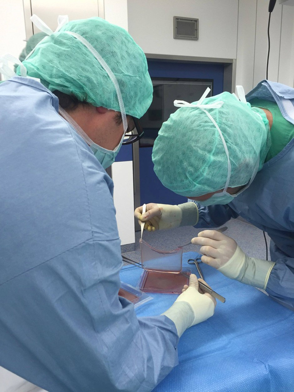 Vorbereitung des Stammzelltransplantats in der Bochumer Kinderklinik.