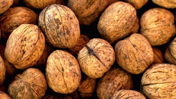 Pflanzenfett bremst Alzheimer-Proteine